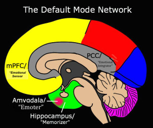 Default-Mode-Network2